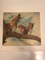 "Charles Frace Screech Owls  Signed  17""x16"""