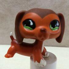 Littlest Pet Shop #675 Brown Dachshund Puppy Green Eyes *RARE* LPS USA SELLER
