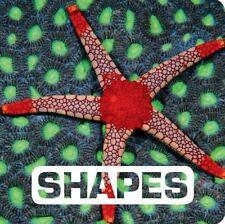 SHAPES - NOUVION, JUDITH/ TAMM, VALI (TRN)/ KRONES, C. A. (ADP) - NEW BOOK
