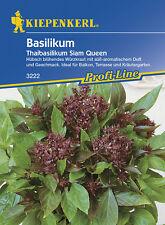 Kräuter Basilikum * Siam Queen * MHD 01/21 Thaibasilikum Kiepenkerl 3222