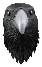 """Large Raven Crow Bird Bust Wall Plaque 14.5""""H Resin Made Taxidermy Collectible"""