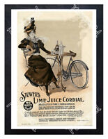Historic Stower's Lime Juice Cordial 1895 Advertising Postcard