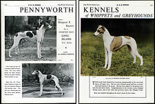 GREYHOUND DOG WORLD OLD 1955 BREED ADVERT PENNYWORTH KENNEL DOUBLE PRINT PAGE