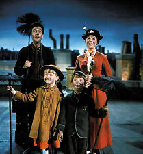 JULIE ANDREWS MARY POPPINS FAMOUS MOVIE SCENE 8x10 PICTURE FANTASTIC  PHOTO