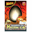 Hatch-em Hatching Dinosaur Egg Kids Magic Growing Pet Hatches Add Water 3 Yrs