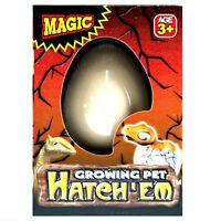 Hatch-em Hatching Dinosaur Egg Kids Children Magic Growing Pet Hatches Play Toy