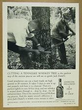 1963 Jack Daniel's woodsmen cutting sawing maple tree photo vintage print Ad