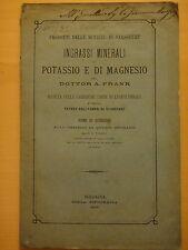 1877-INGRASSI MINERALI DI POTASSIO E DI MAGNESIO-Dr.A.FRANK-G.L.VIDALI-AGRICOLTU