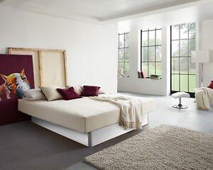 Wasserbett komplett Softside Unosystem Classic gratis Thermoboden