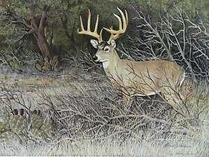 Ten Point Buck by Roland Castanie Deer Hunt Ltd Ed Art Print Wall Art Decor
