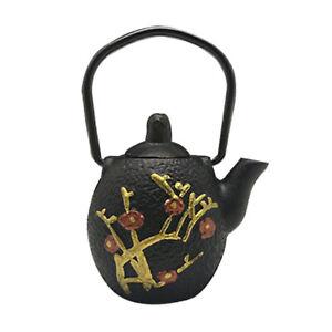 1pc Mini Teapot Cast Iron Tea Pot Flat Bottom Teaware w/ Handle Floral Painted