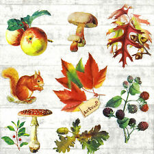 20x Lunch Paper Napkins Serviettes Party, Decoupage - Woody Fruits