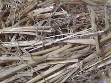 1kg Rabbit guinea pig small animal straw food bedding