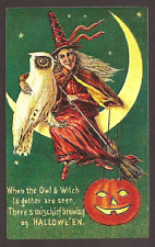 Halloween Witch White Owl Pumpkin and Moon Postcard Carte Postale,,