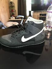 Nike sb high petoskey low dunk paid jordan 1 11  kd 4 pig qs 3m db premier 11.5