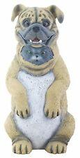 "Dupers - Cat Hidding In Dog Costume Figurine - New Mib 5.75"" - Super Cute"