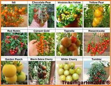 Tomate Set 3: Cherry Cockteil Tomaten Mix ideal für Balkon & Terrasse Samen