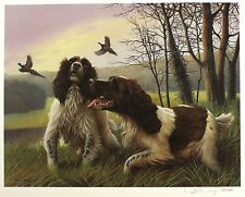 "Nigel hemming ""park drive"" spaniel gun chiens limited ed! taille: 46cm x 55cm neuf"