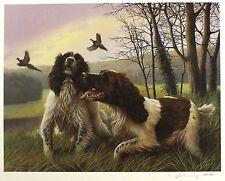 "Nigel Hemming ""Park Drive"" Spaniel Cani Da Caccia LIMITED ED! dimensioni: 46cm x 55cm NUOVO"