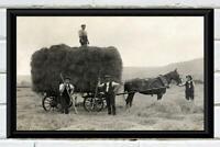Antique Photo ...  Fillling the Hay Wagon ... Antique Farm Photo Print 5x7