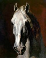 White Horse Head by Theodore Gericault. Highest Quality Made in U.S.A. Prints