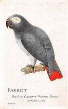 Fauna Bird Parrot, Feed on Capern's Parrot Food, Postcard
