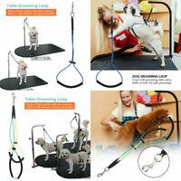 Pet Dog Cat Grooming Table Arm Tub Bath Restraint Rope Harness Noose Loop NEW