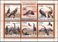Mint stamps miniature sheet Fauna Birds Anhingidaes 2009 Comores Comoros avdpz