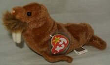Ty Beanie Baby PAUL the Walrus RETIRED - USA SELLER