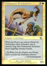Trainiertes Krummhorn FOIL / Trained Pronghorn | NM | Judgment | GER | Magic MTG
