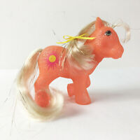 Vintage G1 My Little Pony Glitter Sparkle Mail Order Sunspot