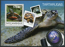 Mozambique Reptiles Stamps 2014 MNH Painted Loggerhead Sea Turtles Fauna 1v S/S