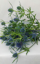 Fresh Blue Thistle, Blue Thistle, Mothers day flowers, Fresh flowers, Thistle