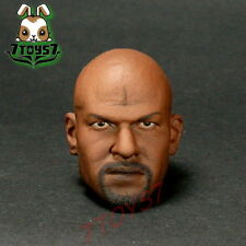 ACI Toys 1/6 AB12 Muscular Body Series_ Head _Terry African Roman sculpt AT051C