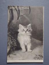 R&L Postcard: Raphael Tuck Art Landor's Cat Studies 863