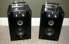 Set of TAD-102 Tube Amplified Speakers