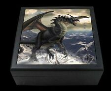 Rogue Dragon. Large Box With Mirror by Tom Wood. Jewellery Trinket.