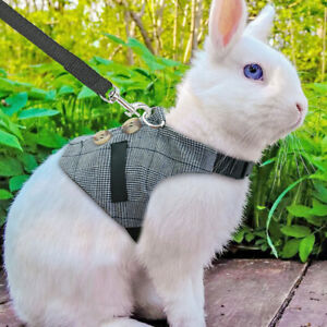 Small Animal Harness & Leads Rabbit Squirrel Rat Cat Small Dog Vest Clothes S-L