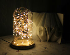 LED Firework Glass Cover Wood Base Touch Switch Table Desk Light Lamp TBT