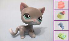 Littlest Pet Shop #126 Gray Siamese Shorthair Cat +1FREE ACCESS Authe minor wear