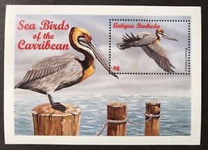 ANTIGUA SEA BIRD STAMPS S/S 1996 MNH BROWN PELICAN CARIBBEAN WILDLIFE NATURE