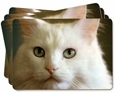 Gorgeous White Cat Picture Placemats in Gift Box, AC-79P
