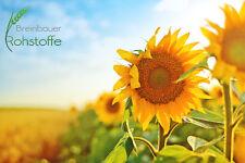 1 kg Reines Sonnenblumenlecithin Pulver | Sonnenblumen Lecithin E 322, GMO-frei