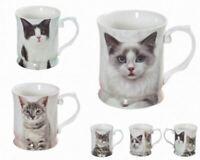 1pc Pet Cat Kitten Coffee Mug Drinking Cup 415cc Fine Bone China w Box Xmas Gift