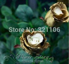 20 Golden Rose Flower Seeds - real, rare, beautiful, home garden flower plant