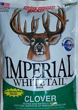 4 lb Whitetail Institute IMPERIAL CLOVER Bulk Seeds 1/2 ACRE Deer Food Plot