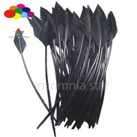 50 Pcs black arrow turkey feathers 25-30 CM /10-12 INCH for jewelry Diy Carnival