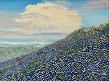 "Daniel Kendrick Texas Bluebonnets ""The Magic Carpet"""