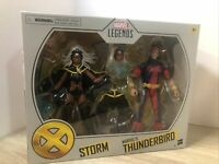 Marvel Legends Storm Thunderbird 2 Pack Target Exclusive New In Box