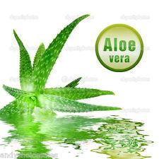 Aloe Vera Gel 50g - 5kg Natural